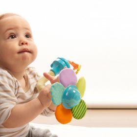 צעצוע התפתחות